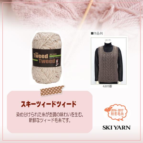 秋冬毛糸 『TweedTweed (ツィードツィード) 6206番色』 SKIYARN スキーヤーン