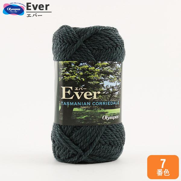 秋冬毛糸 『Ever (エバー) 7 (青緑) 番色』 Olympus オリムパス