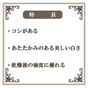 樹脂風粘土 『cosmos(コスモス) プチサイズ 125g(62.5g×2本)』 日清アソシエイツ
