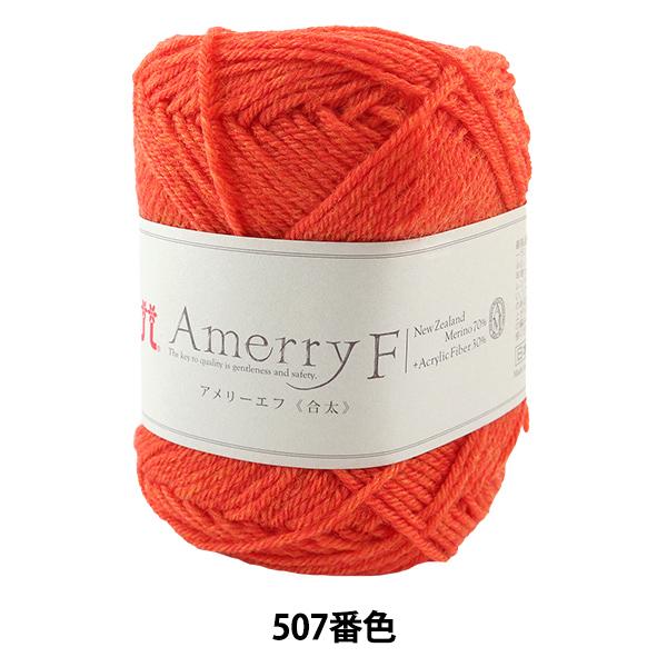 秋冬毛糸 『Amerry F (アメリーエフ) (合太) 507番色』 Hamanaka ハマナカ