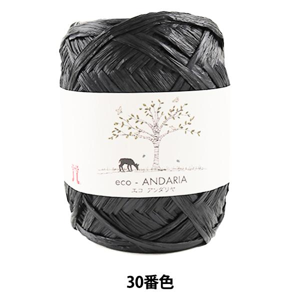 手芸糸 『エコアンダリヤ 030 (黒) 番色』 Hamanaka ハマナカ
