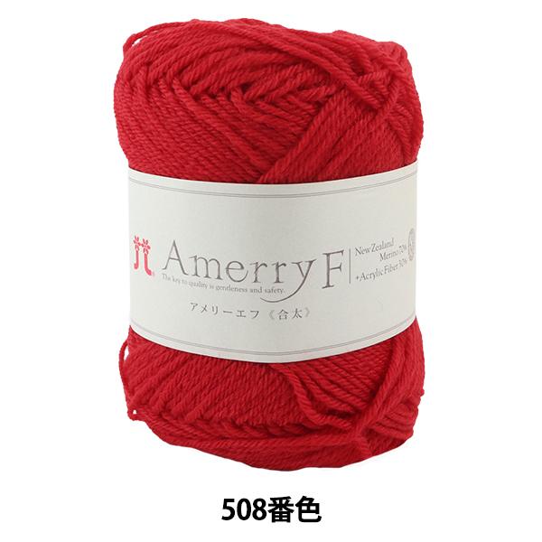 秋冬毛糸 『Amerry F(アメリーエフ) (合太) 508番色』 Hamanaka ハマナカ