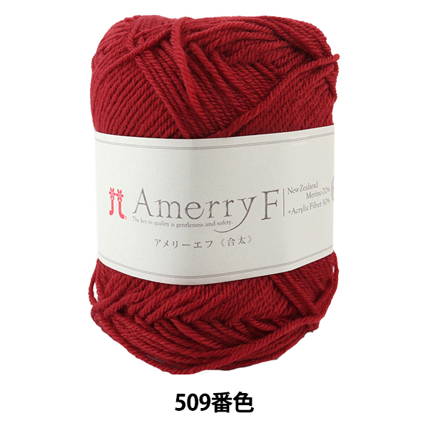 秋冬毛糸 『Amerry F (アメリーエフ) (合太) 509番色』 Hamanaka ハマナカ
