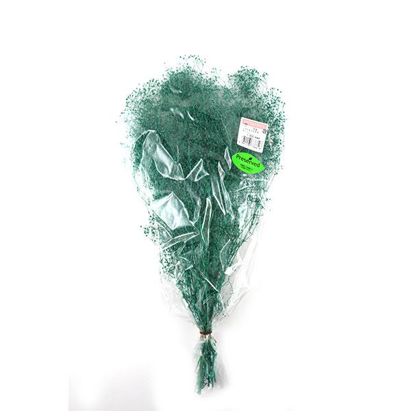 【フラワー商品最大20%オフ】 プリザーブドフラワー 『ソフトミニカスミ草 グリーン 73861』