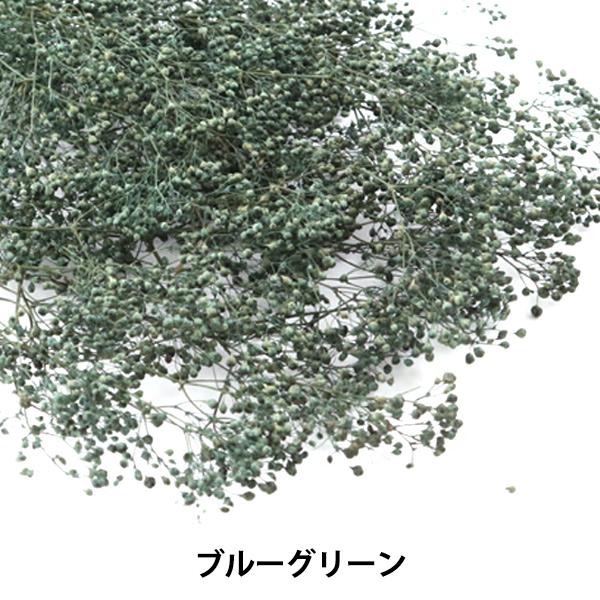 【フラワー商品最大20%オフ】 プリザーブドフラワー 『ソフトミニカスミ草 ブルーグリーン 75524』