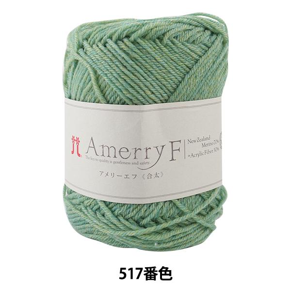 秋冬毛糸 『Amerry F(アメリーエフ) (合太) 517番色』 Hamanaka ハマナカ