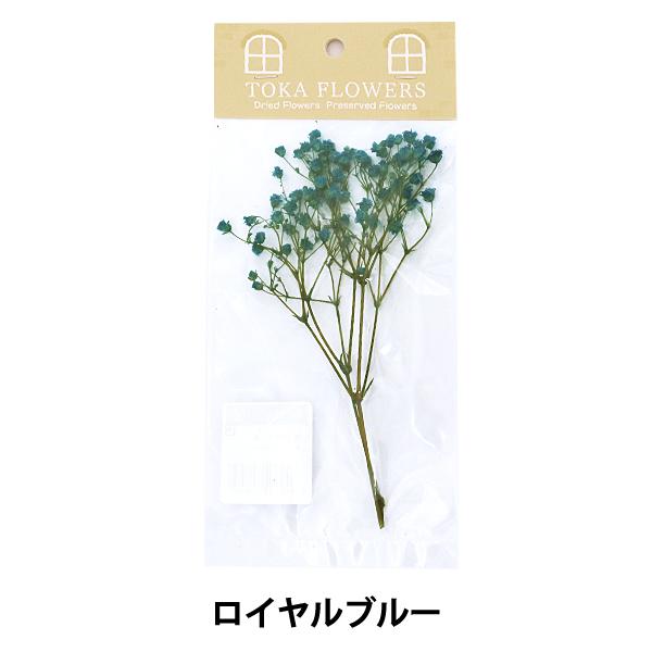 プリザーブドフラワー 『ソフトかすみ草 ロイヤルブルー 約1g 79251』
