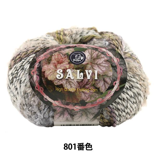秋冬毛糸 『SALVI (サルヴィ) 801番色』 Puppy パピー