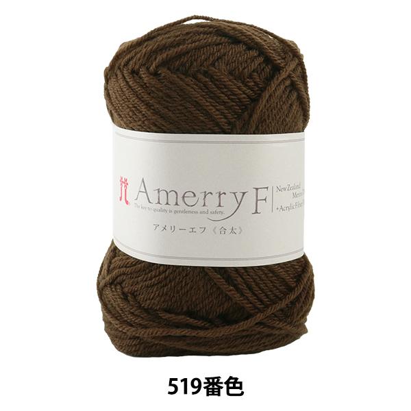 秋冬毛糸 『Amerry F(アメリーエフ) (合太) 519番色』 Hamanaka ハマナカ