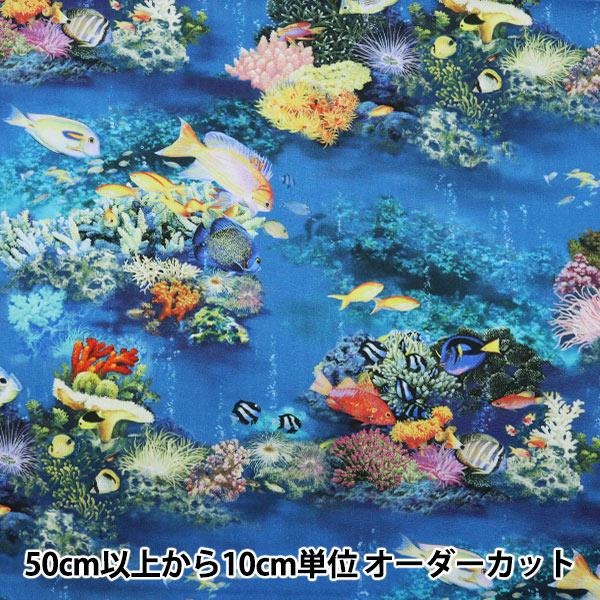 【数量5から】生地 『シーチング インクジェットプリント season greeting 7月海 ブルー YKA-81080-3A』 KOKKA コッカ