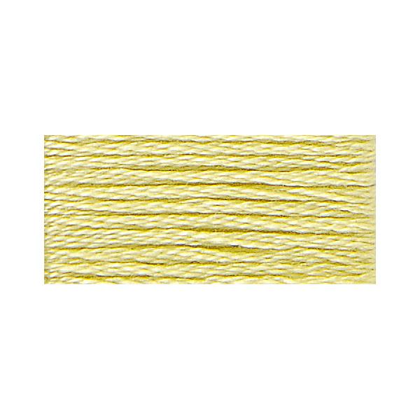 刺しゅう糸 『117-11 DMC 25番糸刺繍糸』 DMC ディーエムシー