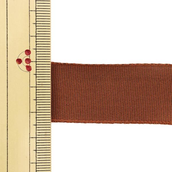 【数量5から】 リボン 『イクシーズ ワイヤー入り 1467 幅約2.5cm 21番色』 AOYAMARIBBON 青山リボン