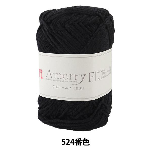 秋冬毛糸 『Amerry F(アメリーエフ) (合太) 524番色』 Hamanaka ハマナカ