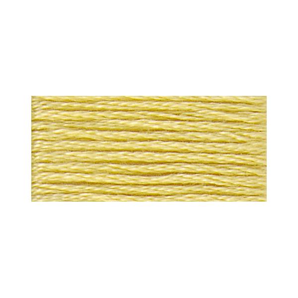 刺しゅう糸 『117-17 DMC 25番糸刺繍糸』 DMC ディーエムシー