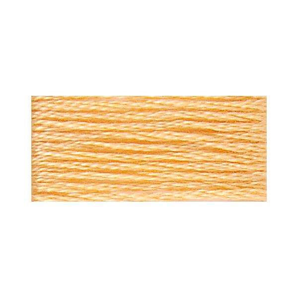【刺しゅう道具・材料最大20%オフ】117-19 DMC 25番糸