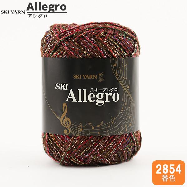秋冬毛糸 『SKI Allegro (スキーアレグロ) 2854番色』 SKIYARN スキーヤーン