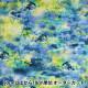 【数量5から】生地 『yui by Ayano ichiyanagi calm インクジェット 綿麻コンパス EGXA-6404-1A』 KOKKA コッカ