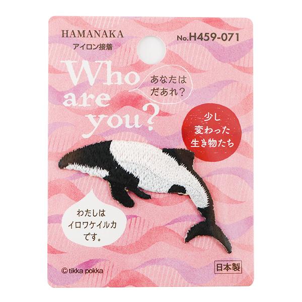 ワッペン 『Who Are You? (フーアーユー?) イロワケイルカ H459-071』 Hamanaka ハマナカ