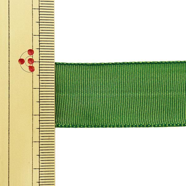 【数量5から】 リボン 『イクシーズ ワイヤー入り 1467 幅約2.5cm 28番色』 AOYAMARIBBON 青山リボン