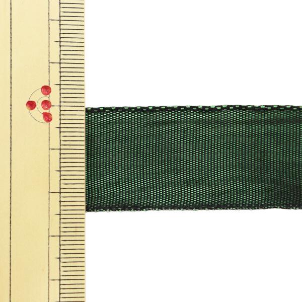 【数量5から】 リボン 『イクシーズ ワイヤー入り 1467 幅約2.5cm 41番色』 AOYAMARIBBON 青山リボン