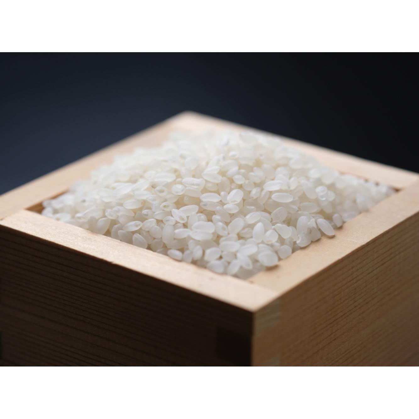 大和銘米ひのひかり 5kg×2