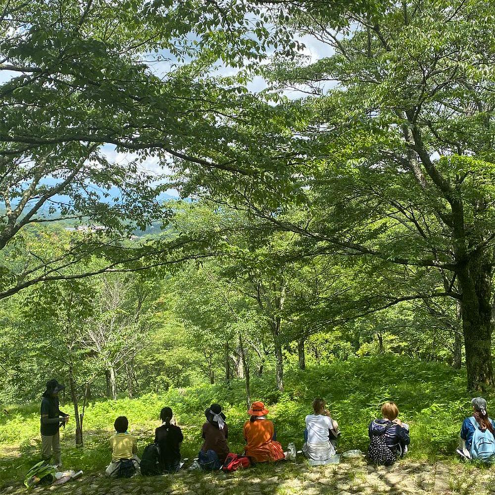 吉野森林浴体験 ペアチケット
