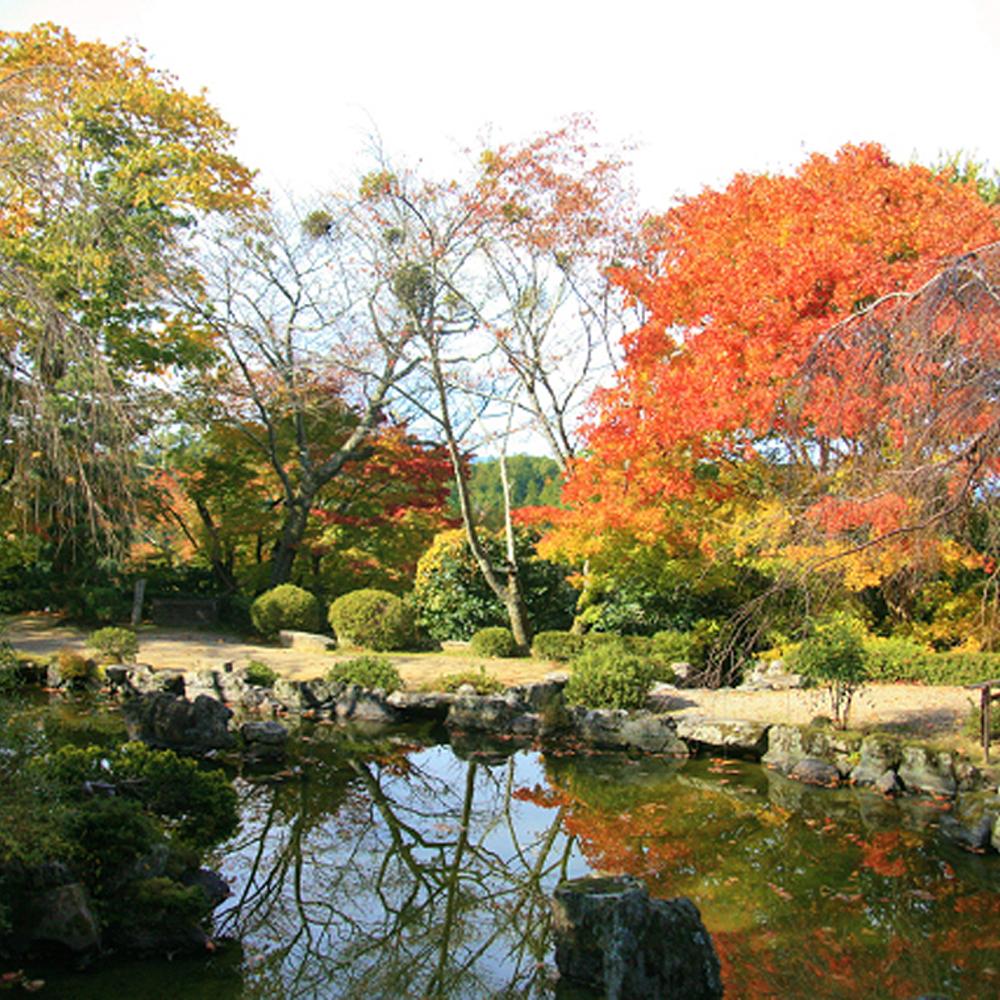 『竹林院 群芳園』太閤プラン(2名様昼食券)