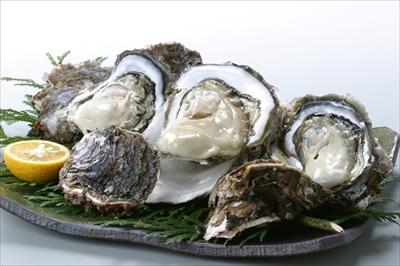 隠岐 の 岩牡蠣 5個(2Lサイズ) プロトン冷凍 (生食可)