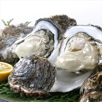 隠岐 の 岩牡蠣 5個(Mサイズ) プロトン冷凍 (生食可)