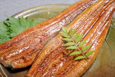 国産 静岡県産 うなぎ の 蒲焼 120g×2 (タレ+山椒付き)