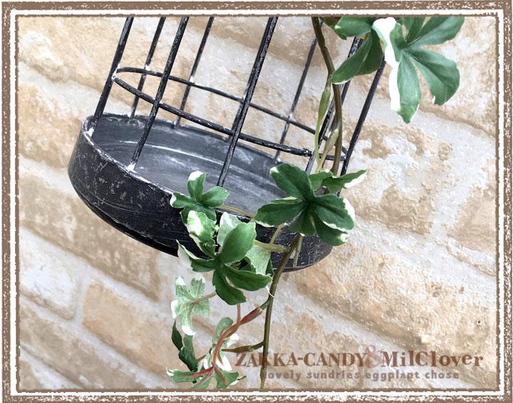 ミニシサス アイビーバインヴァリゲイトグリーン(シュガーバイン) 【フェイクグリーン リアル アーティフィシャルフラワー 造花】