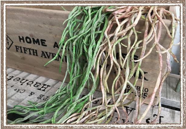 オーキッドルート(1束12本)【フェイクグリーン アーティフィシャルフラワー 造花】