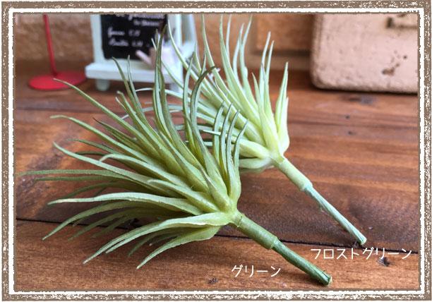 エアプランツ ミニ【エアープランツ フェイクグリーン アーティフィシャルフラワー 造花】
