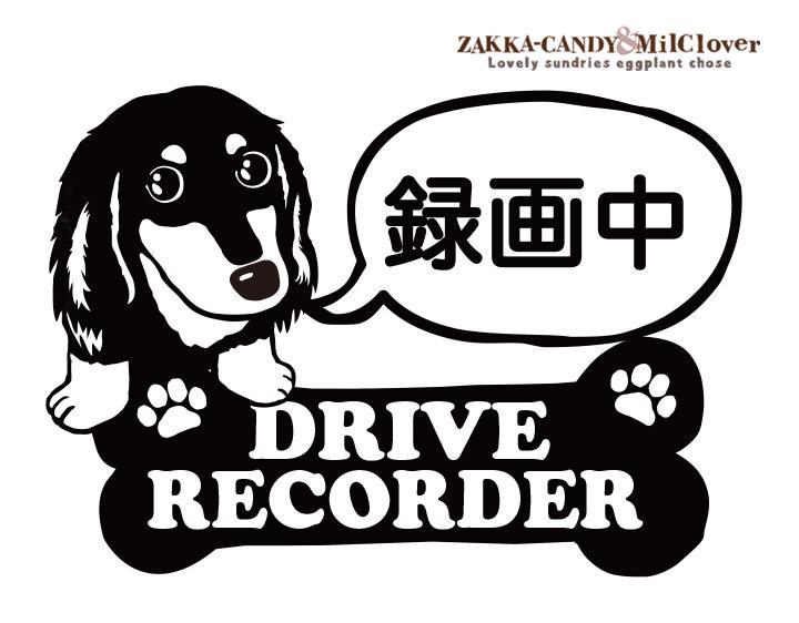 ドライブレコーダー ステッカー 「 録画中」 ダックス