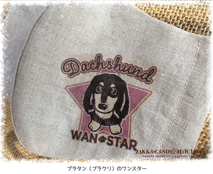 【9月16日22時再販開始】ハンドメイド 布マスク オリジナル ダックスマスク リネン100