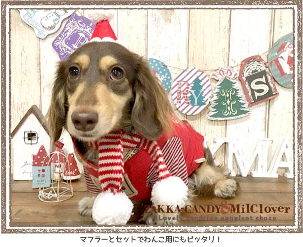 【わんちゃん猫ちゃんにも可愛い】チアフルフレンズ クリスマスハット (L)
