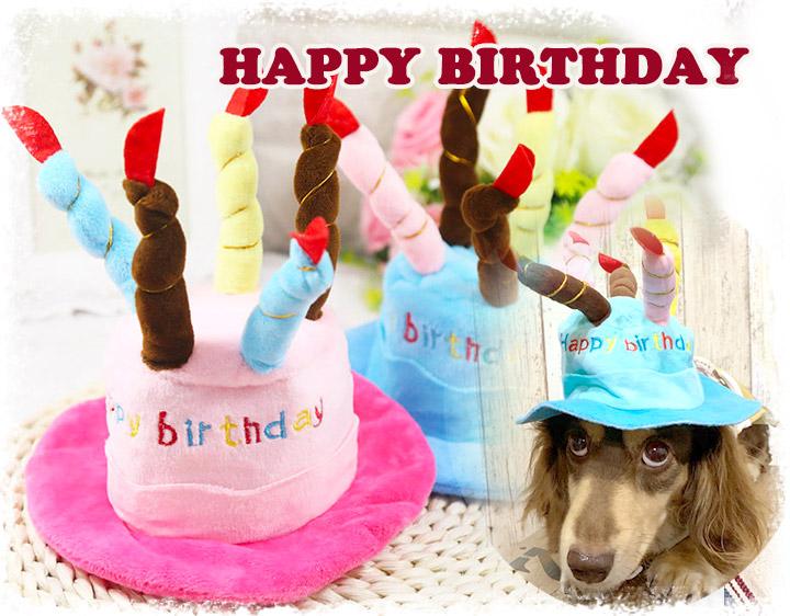 お誕生日 帽子 バースデイ ハット わんこ ねこちゃん Happybirthday 【犬 いぬ 猫 かわいい】