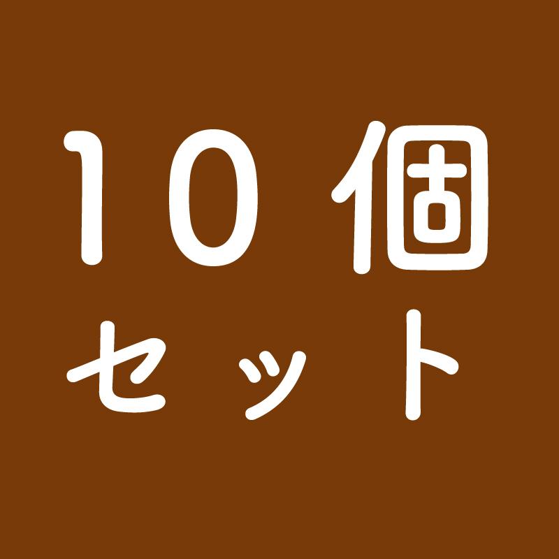 然の膳 薬膳カレー(10個セット)