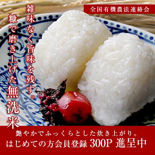 【無洗米・5kg】冷めてもおいしいプレミアム米