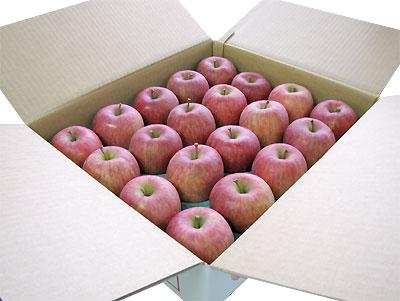 【1月上旬】キュッと締まった完熟ふじりんご