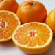 【2月中下旬の柑橘】「はるみ」
