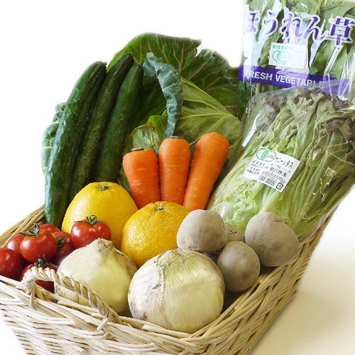 【3/4(木)出荷】野菜セット「 シンプルタイプ」(2〜3人家族)1回のみ