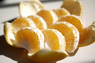 【3月中旬〜の柑橘】 「甘夏・あまなつ」