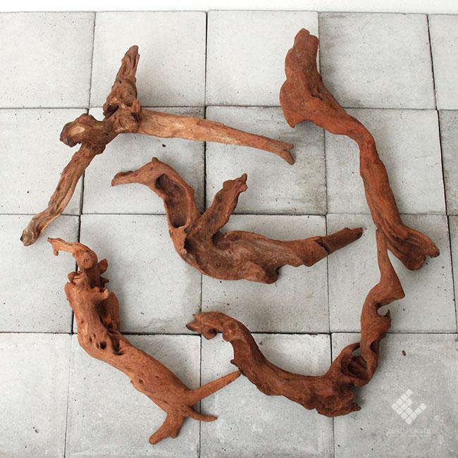 Drift Wood / ドリフトウッド 【 マングローブ / S / Bタイプ(棒) / 3本 】 [ パルダリウム、コケリウムのレイアウトに最適な流木 ]