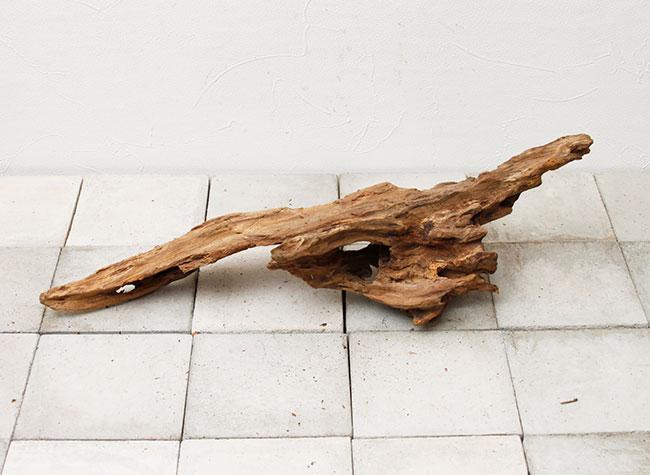 UWS Material Market / Sulawesi Wood 【 スラウェシウッド / 厳選流木 】 【 SWW2102-18 】
