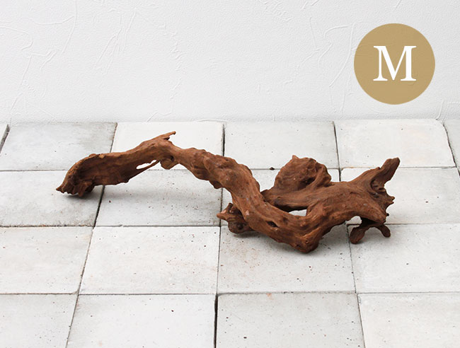 Drift Wood / ドリフトウッド 【 マングローブ / M  】 【 MG0027 】