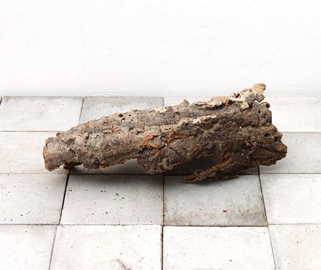 Cork / コルク / 板  【 BC0029 】【 最大長:約300mm 】
