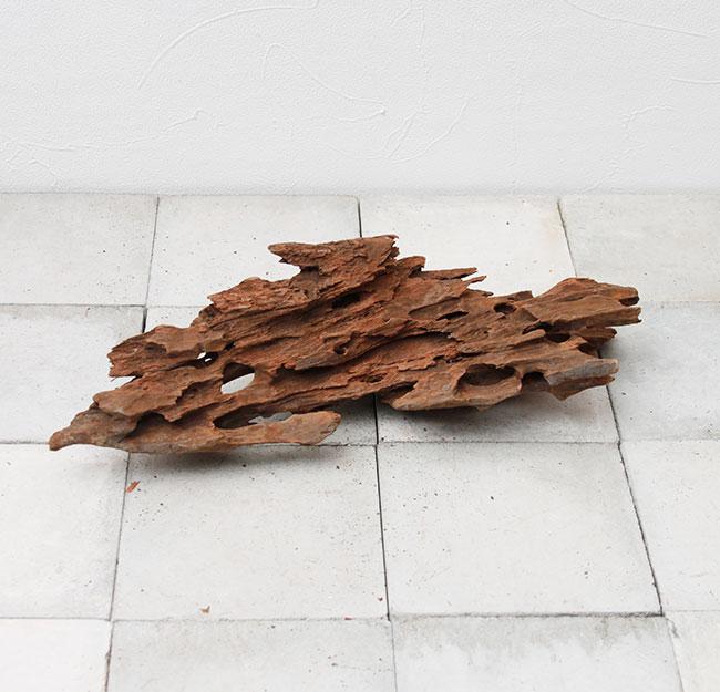 UWS Material Market / Sulawesi Wood 【 スラウェシウッド / 厳選流木 】 【 SW2107-04 】