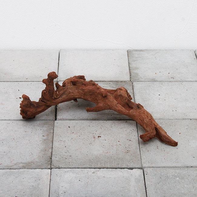 Drift Wood / ドリフトウッド 【 マングローブ / S / Aタイプ(枝) 】 【 MG0008 】