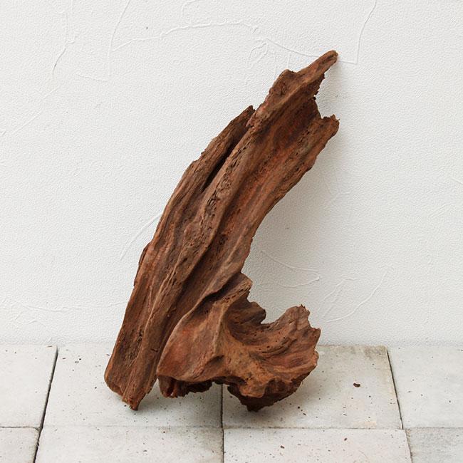 UWS Material Market / Sulawesi Wood 【 スラウェシウッド / 厳選流木 】 【 SW-2009-10 / S 】